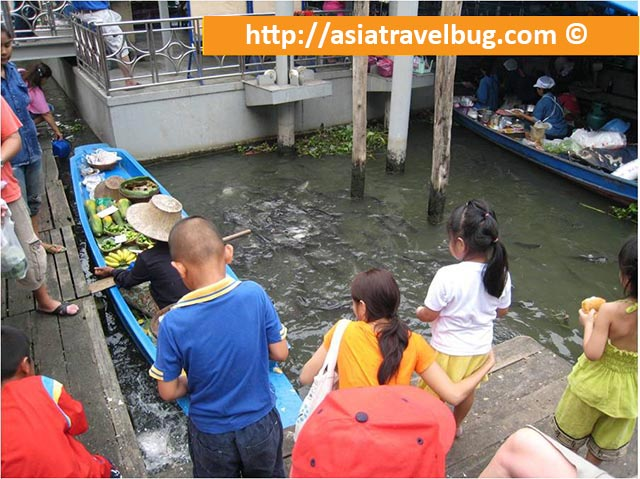 Cat Fish in Taling Chan Floating Market
