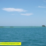 Palawan: Puerto Princesa Honda Bay, Coron, El Nido
