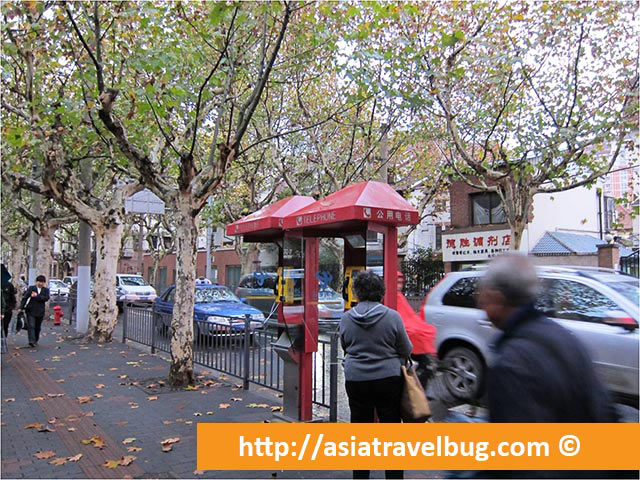 Outside Fuxing Park with Autumn Leaves Falling from the Trees