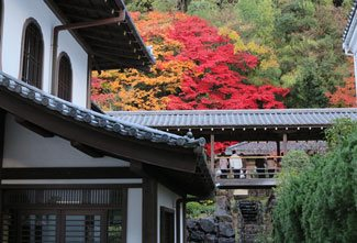 Kyoto Itinerary with Side Trips to Osaka and Nara