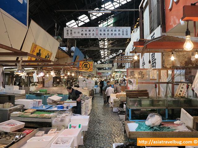 things to do in tokyo | visit tsukiji fish market