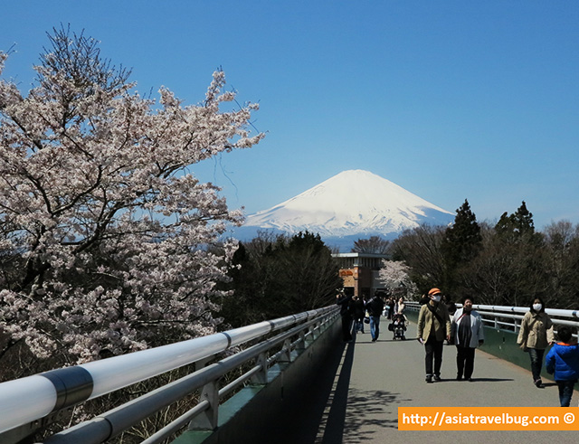 Another Mount Fuji View from Gotemba Premium Outlets