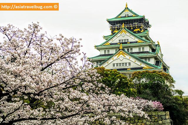 Osaka Castle - where to stay in osaka