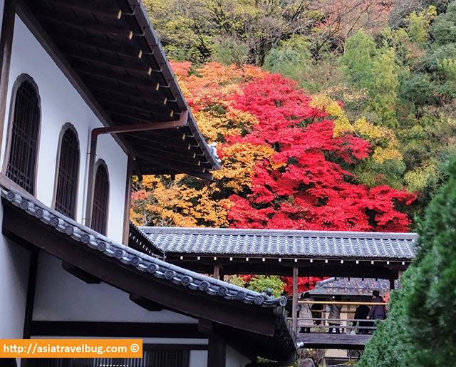 Autumn at Higashiyama Kyoto